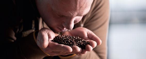 Im Malz stecken zahlreiche Vitamine und Mineralstoffe