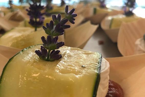 Regionale Küche passend zur Saison mit internationalen Akzenten erwartet die Gäste.