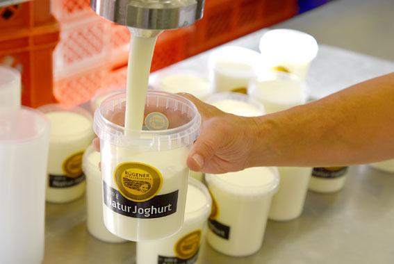Jogurt, Quark und Desserts aus Poseritz sind auch im Handel erhältlich.