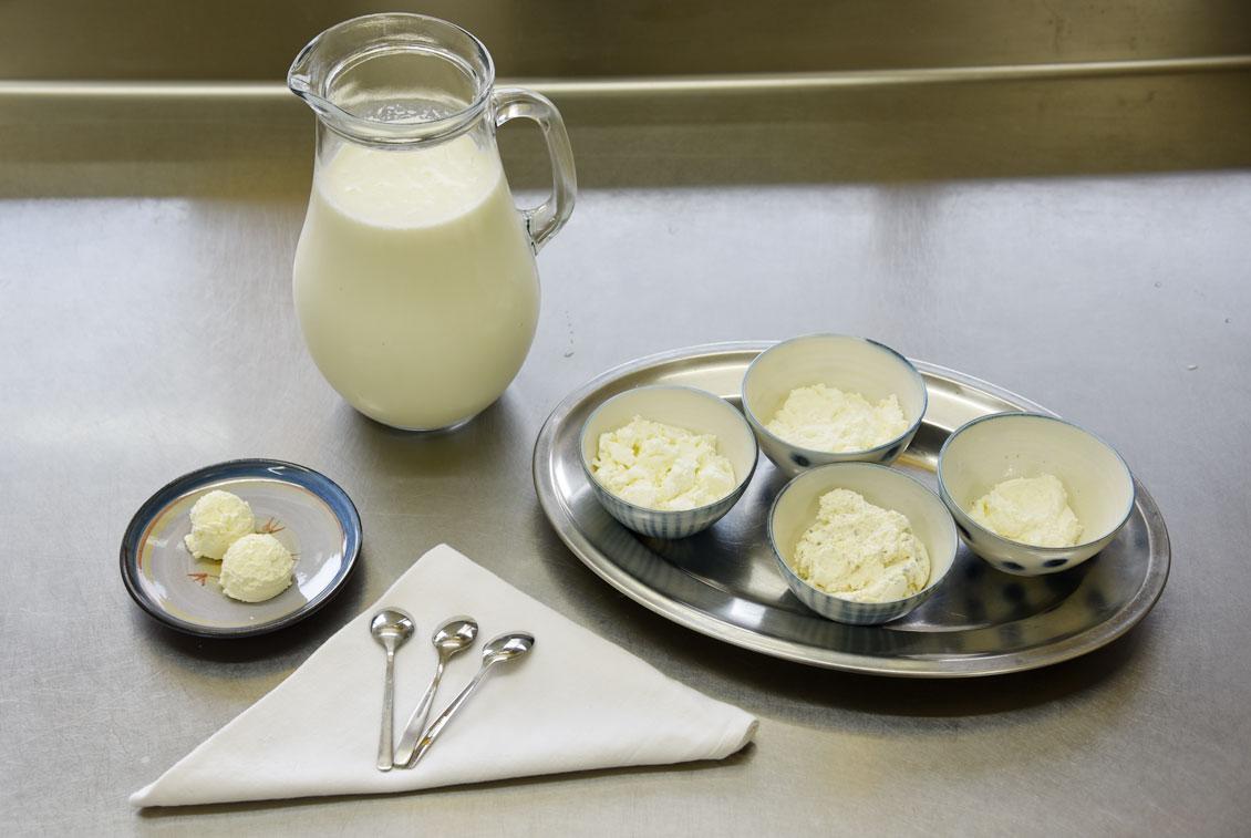Kleine Verkostung der frischen Milchprodukte in der hofeigenen Käserei.