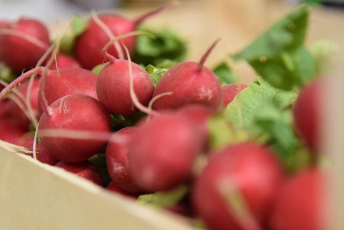Auf Kundenwunsch wird auch Obst und Gemüse in Bio-Qualität geliefert.