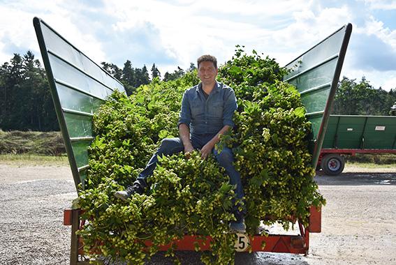 Markus Eckert ist der größte Bio-Hopfenbauer Europas.